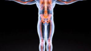 osteoporosi - ego valeo chieri